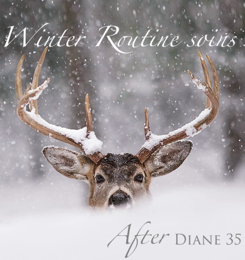 Winter routine soins